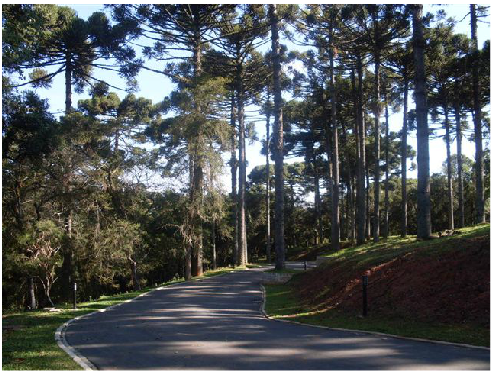 Condomínio Reserva do Bosque 02